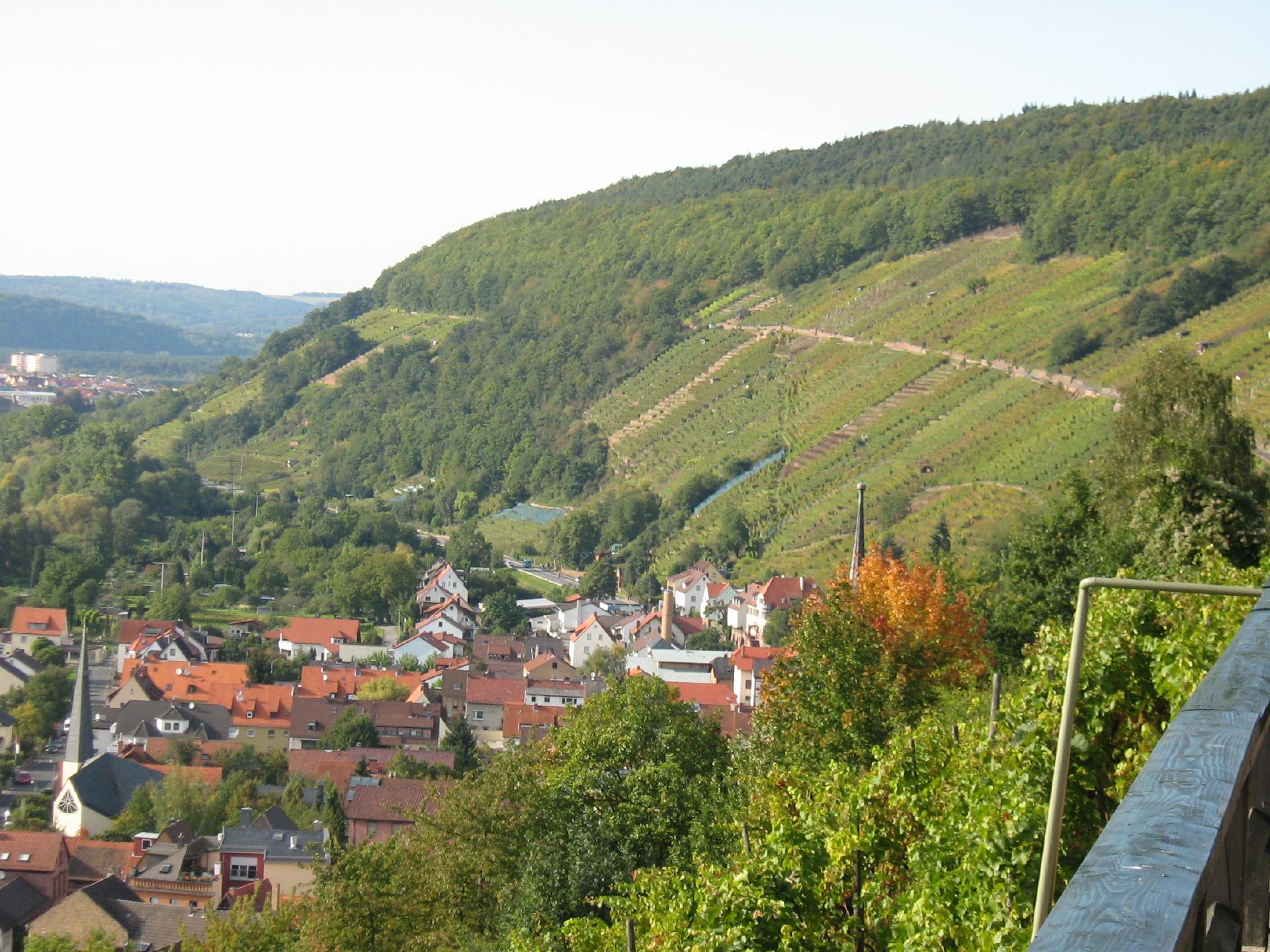 Klingenberger Schlossberg - Vinum Franconium